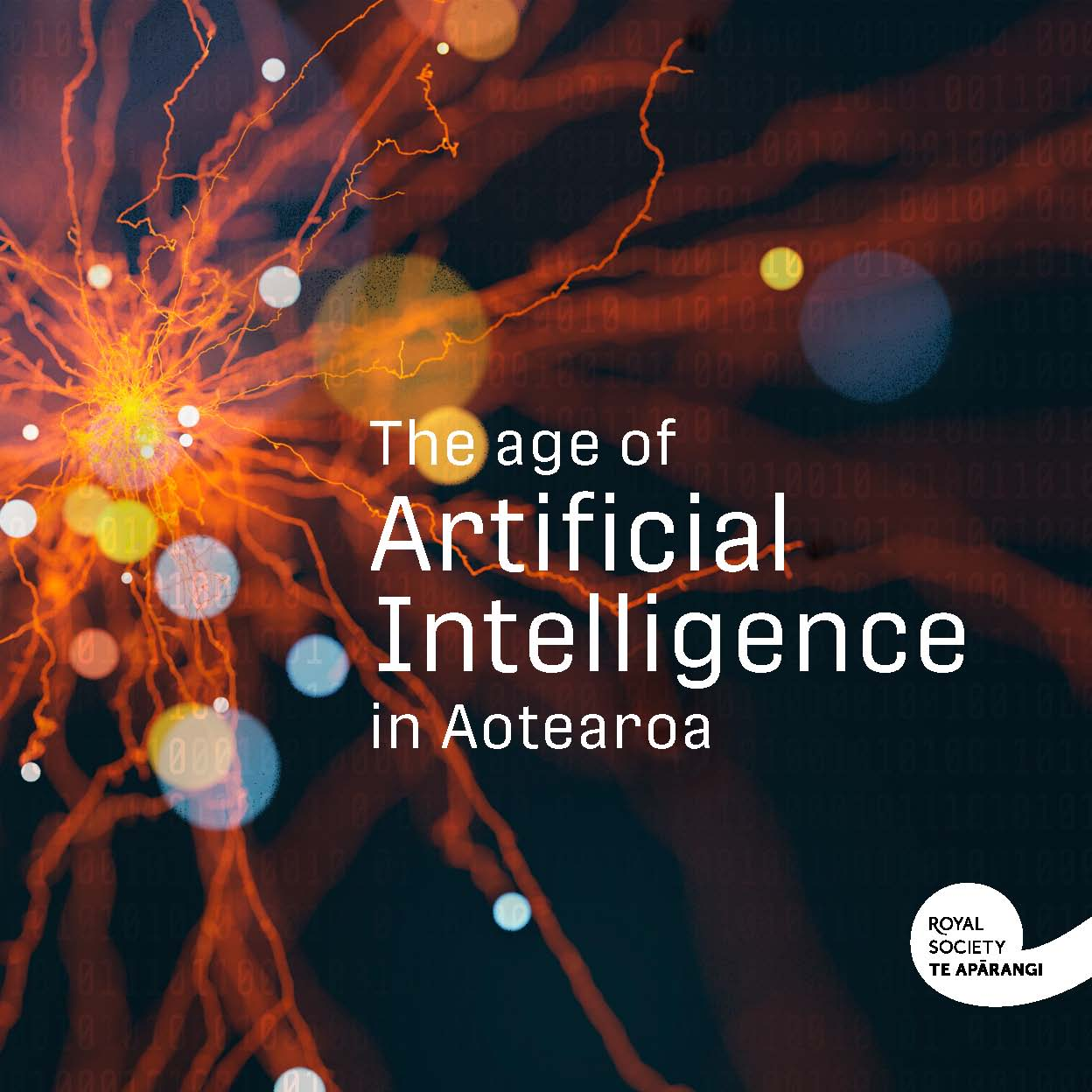 Summary: The Age of Artificial Intelligence in Aotearoa